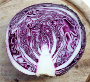 Red Cabbage | Joy of Yum