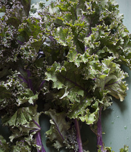 Kale| Joy of Yum