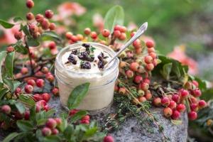 Best Basic Hummus | Joy of Yum
