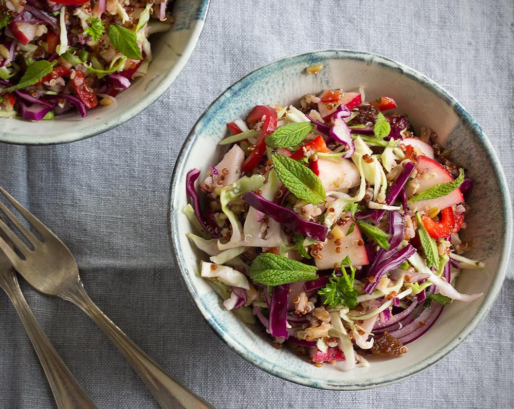Jewel Salad | Cabbage and Grain Salad | Joyof Yum